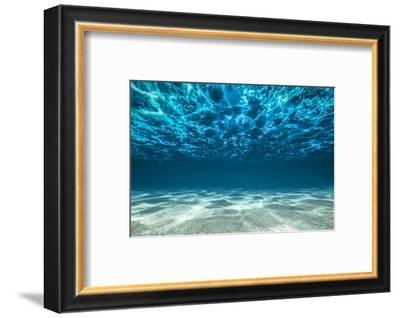Ocean Bottom, View Beneath Surface-Cico-Framed Photographic Print