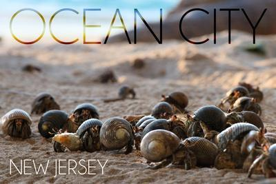https://imgc.artprintimages.com/img/print/ocean-city-new-jersey-group-of-hermit-crabs_u-l-q1gqpw20.jpg?p=0