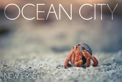 https://imgc.artprintimages.com/img/print/ocean-city-new-jersey-hermit-crab-on-beach_u-l-q1gqpwc0.jpg?p=0