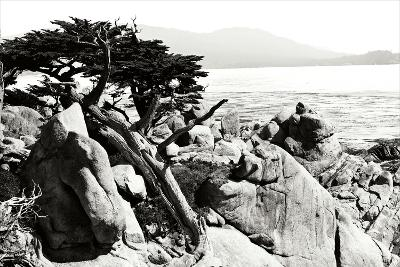 Ocean Cliff II-Alan Hausenflock-Photographic Print