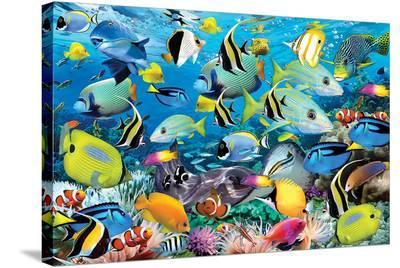 Ocean Colours-Howard Robinson-Stretched Canvas Print