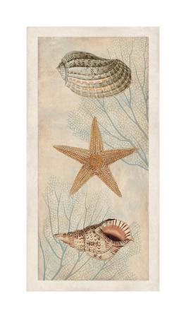https://imgc.artprintimages.com/img/print/ocean-companions-i_u-l-f7mgxo0.jpg?p=0