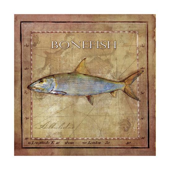 Ocean Fish IV-Beth Anne Creative-Art Print