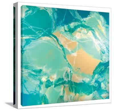 Ocean Floor-Barbara Biolotta-Stretched Canvas Print