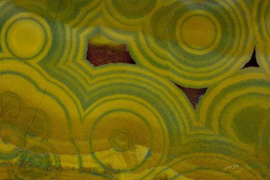 Ocean Jasper from Madagascar-Darrell Gulin-Photographic Print