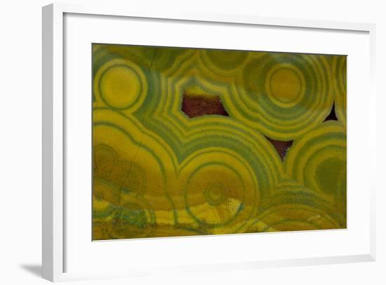 Ocean Jasper from Madagascar-Darrell Gulin-Framed Photographic Print