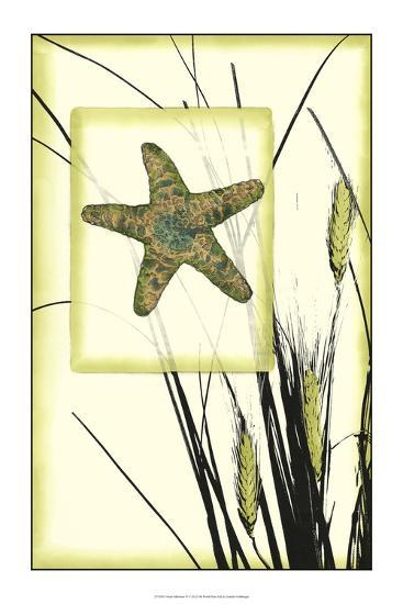 Ocean Silhouette IV-Jennifer Goldberger-Premium Giclee Print
