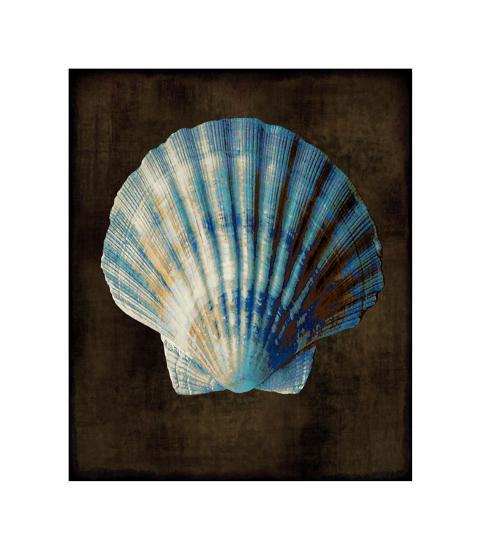 Ocean Treasure II-Caroline Kelly-Giclee Print