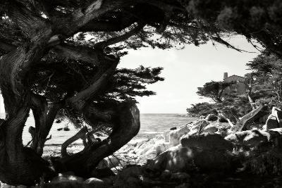 Ocean View I-Alan Hausenflock-Photographic Print