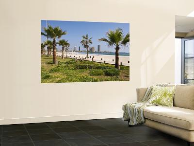 Oceanfront Promenade and Beach-John Elk III-Wall Mural