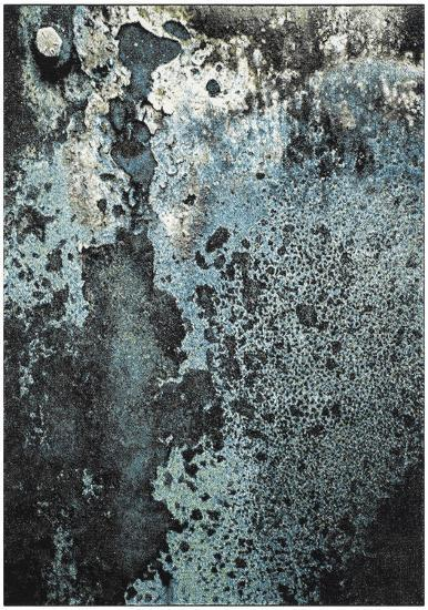 Oceanic Area Rug - 9' x 12'--Home Accessories