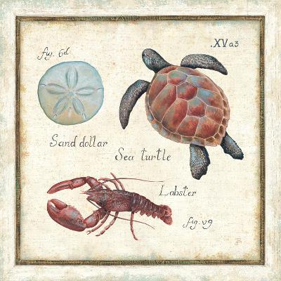 Oceanography II-Daphne Brissonnet-Premium Giclee Print