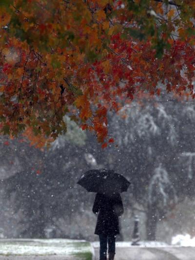 October Snow-Jacqueline Larma-Photographic Print