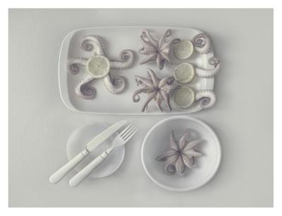 https://imgc.artprintimages.com/img/print/octopus-2_u-l-f8whki0.jpg?p=0