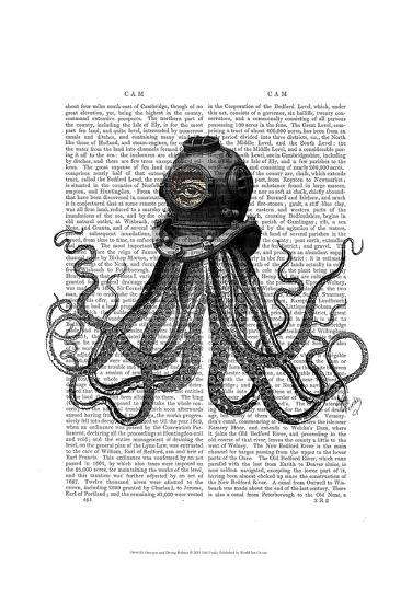 Octopus and Diving Helmet-Fab Funky-Art Print