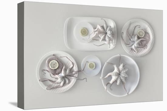 Octopus-Dimitar Lazarov-Stretched Canvas Print
