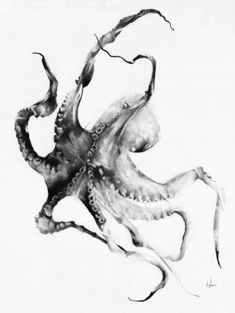 https://imgc.artprintimages.com/img/print/octopus_u-l-pw4l6t0.jpg?p=0