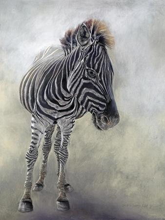 Equus burchelli 1, 2009