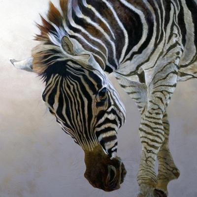 Equus burchelli 2, 2010