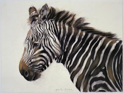 Zebra, 2002