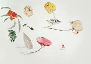 Flower Study by Odilon Redon