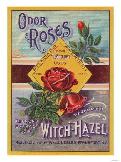 Odor Roses Witch-Hazel Label - Frankfort, NY-Lantern Press-Art Print