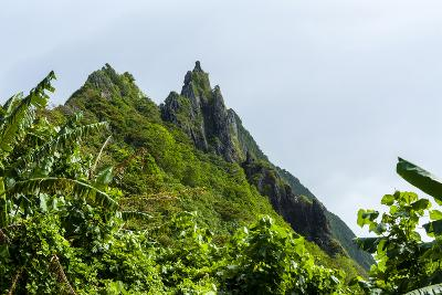 Ofu Island, Manu'A Island Group, American Samoa, South Pacific-Michael Runkel-Photographic Print