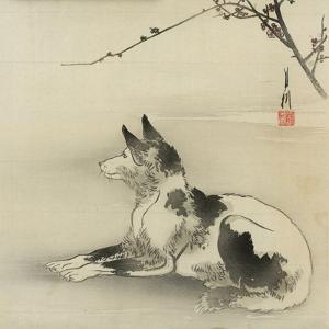 Black and White Dog, 1910 by Ogata Gekko