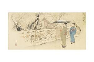 Garyo-Bai Plum in Kameido, December 1895 by Ogata Gekko