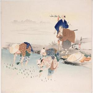 Rice Planting, C.1890s-1900s by Ogata Gekko