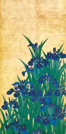 Irises, Japanese