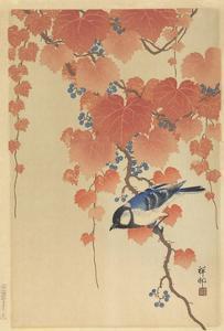 Great Tit on Paulownia Branch, 1925-36 by Ohara Koson