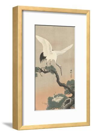 Japanese Crane on Pine Branch, 1900-30
