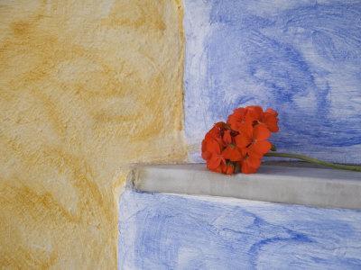 https://imgc.artprintimages.com/img/print/oia-santorini-cyclades-islands-greek-islands-greece-europe_u-l-p7itcg0.jpg?p=0