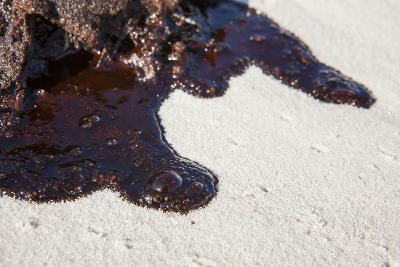 Oil on Beach from the Bp Oil Spill, Alabama, USA. Gulf of Mexico, June 2010-Krista Schlyer-Photographic Print