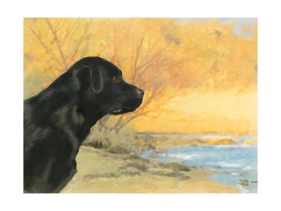 Oil Painting Portrait Of Black Labrador In Autumn-Yarvet-Art Print