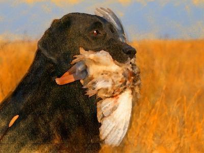 Oil Painting Portrait Of Black Labrador With Duck-Yarvet-Art Print