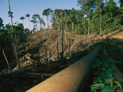 Oil Pipeline Running Through Amazon Basin Forests-Steve Winter-Photographic Print