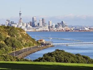Okahu Bay and Skyline, Auckland, North Island, New Zealand, Pacific