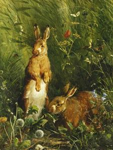 Hares, 1878 by Olaf August Hermansen