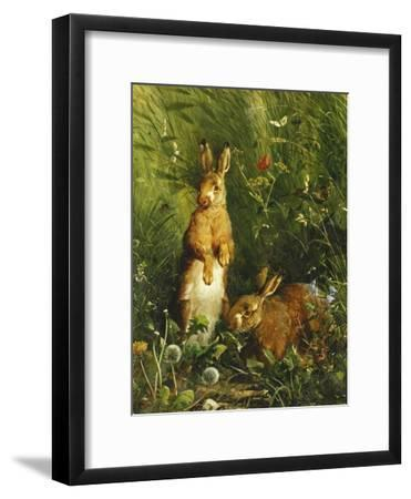 Hares, 1878
