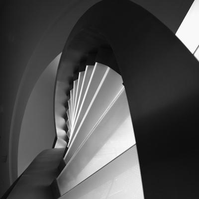 Straight and Curves Lines by Olavo Azevedo