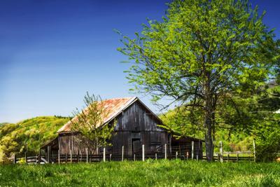 Old Backyard Barn-Alan Hausenflock-Photographic Print
