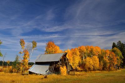Old Barn-Ike Leahy-Photo