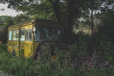 Old Bus in Woodland-Clive Nolan-Photographic Print
