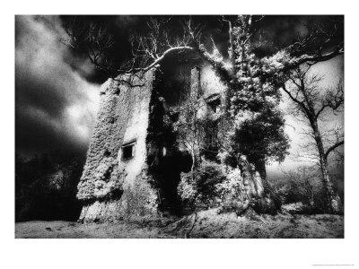 https://imgc.artprintimages.com/img/print/old-castle-hackett-county-galway-ireland_u-l-p3f9o50.jpg?p=0