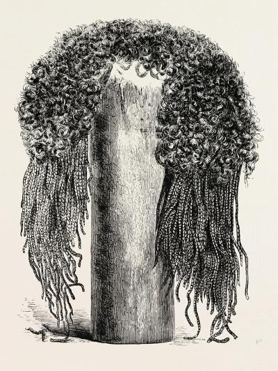 Old Egyptian Lady's Wig, in the British Museum, Egypt, 1879--Giclee Print