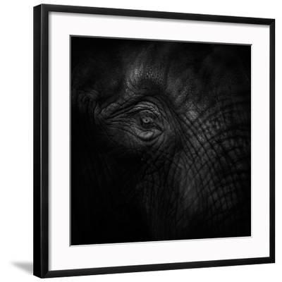 Old Eye-Ruud Peters-Framed Photographic Print