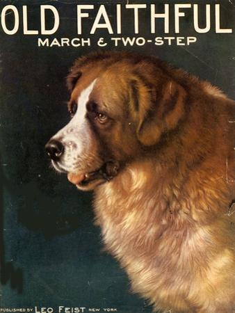 Old Faithful Dogs, USA, 1910