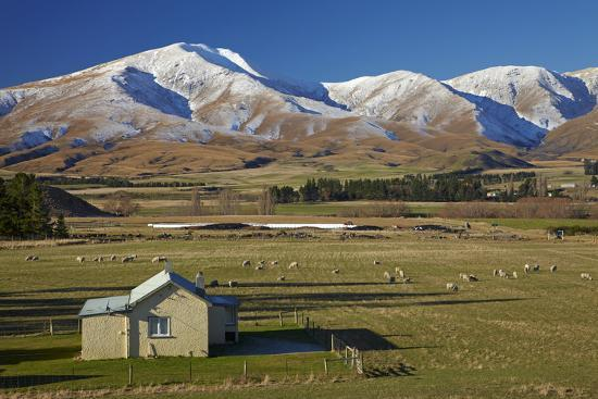 Old Farm Buildings and Kakanui Mountains, Maniototo, Central Otago, South Island, New Zealand-David Wall-Photographic Print